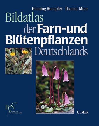 9783800133642: Bildatlas der Farn- und Blütenpflanzen Deutschlands (Die Farn- und Blütenpflanzen Deutschlands)