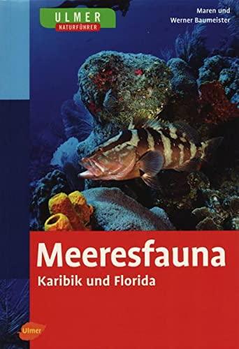 Meeresfauna: Baumeister, Maren /