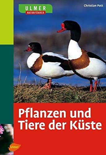 9783800148905: Pflanzen und Tiere der K�ste