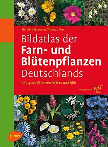 9783800149902: Bildatlas der Farn- und Blütenpflanzen Deutschlands: Alle 4200 Pflanzen in Text und Bild