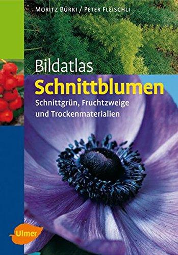 9783800156450: Bildatlas Schnittblumen: Schnittgr�n, Fruchtzweige und Trockenmaterialien