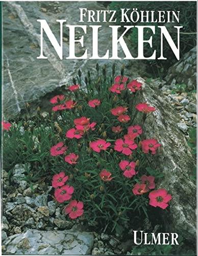 9783800164202: Nelken
