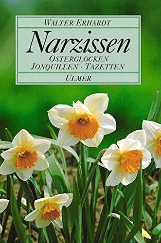 Narzissen: Osterglocken, Jonquillen, Tazetten (Hardback): Walter Erhardt