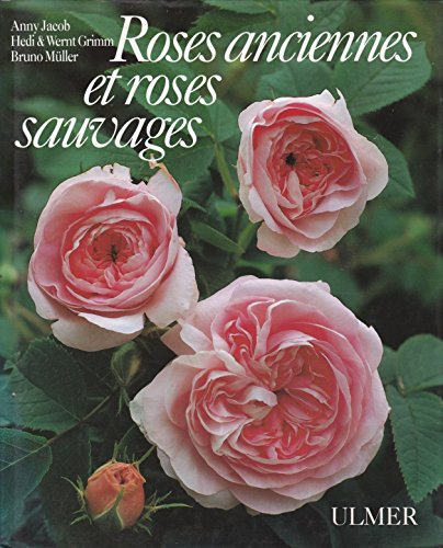 9783800165254: Roses anciennes et roses sauvages