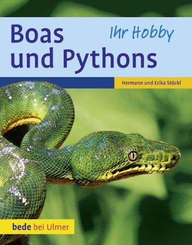 9783800167661: Boas und Pythons