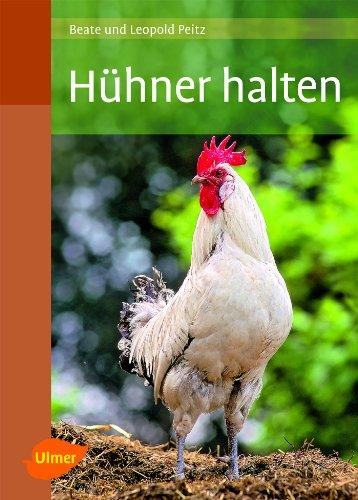 9783800177912: Hühner halten