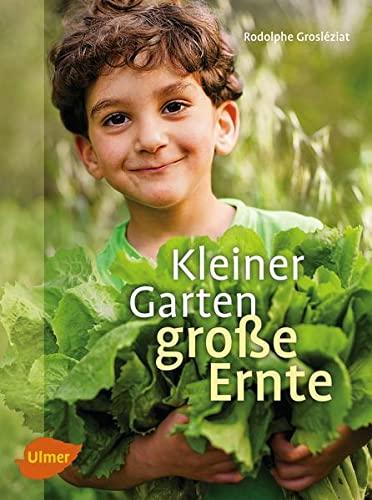 9783800178353: Kleiner Garten, große Ernte