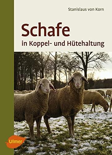 Schafe in Koppel- und Hütehaltung: Korn, Stanislaus Von;