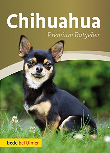 9783800198672: Chihuahua