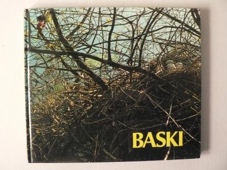 9783800301751: Baski. Auf der Vogelinsel. (Bd. 8)
