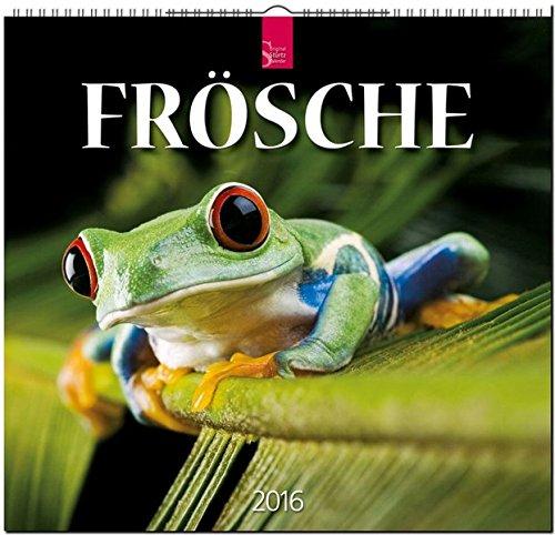 9783800354719: Frösche 2016