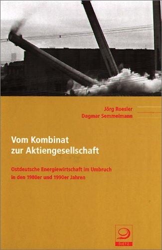 9783801241520: Vom Kombinat zur Aktiengesellschaft: Ostdeutsche Energiewirtschaft im Umbruch in den 1980er und 1990er Jahren