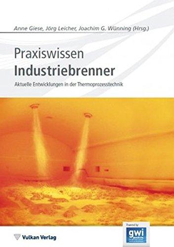 Praxiswissen Industriebrenner: Anne Giese