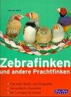 Zebrafinken und andere Prachtfinken: Zebrafinken und andere