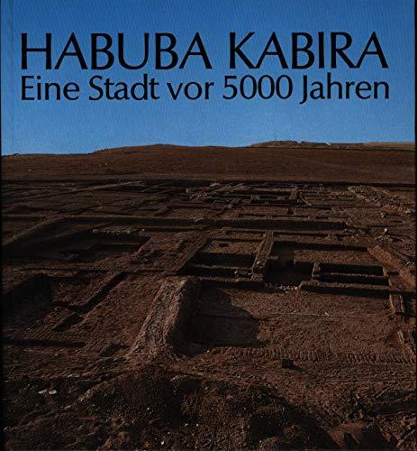 9783805304498: Habuba Kabira: Eine Stadt vor 5000 Jahren : Ausgrabungen der Deutschen Orient-Gesellschaft am Euphrat in Habuba Kabira, Syrien (Sendschrift der Deutschen Orient-Gesellschaft)