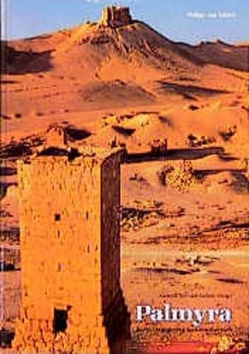Palmyra. Kulturbegegnung im Grenzbereich.: Schmidt-Colinet, Andreas