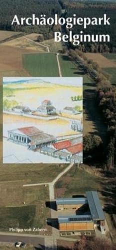 9783805333283: Archäologiepark Belginum