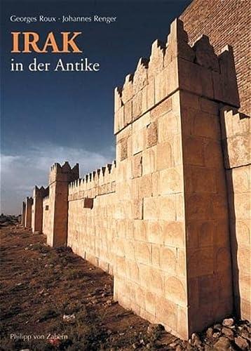 9783805333771: Irak in der Antike