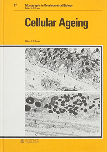 Cellular ageing