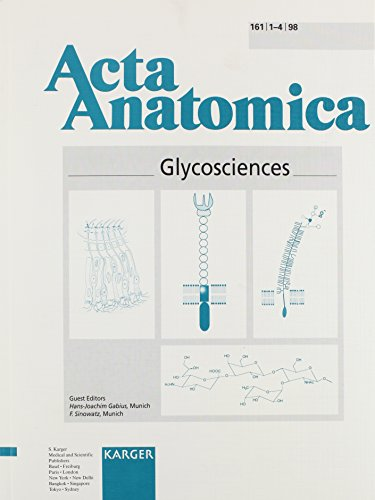 9783805567756: Glycosciences (Acta Anatomica, Volume 161, Numbers 1-4, 1998)