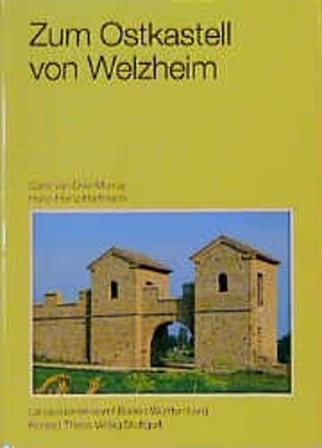 9783806210774: Die römischen Schuhe aus einem Brunnen im Ostkastell von Welzheim