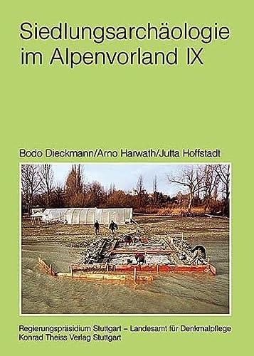 9783806221008: Siedlungsarchäologie im Alpenvorland IX