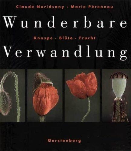 Wunderbare Verwandlung. Knospe, Blüte, Frucht (photographischer Bildband): Nuridsany, Claude ;...