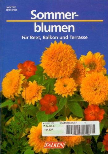 9783806816525 Sommerblumen Fur Beet Balkon Und Terrasse Zvab