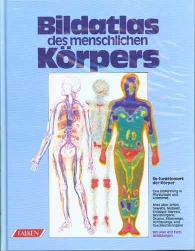 Bildatlas des menschlichen Körpers. von Vanio Vannini: Vannini, Vanio und