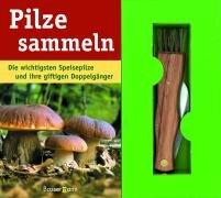Pilze sammeln (3809418668) by Rob Wood