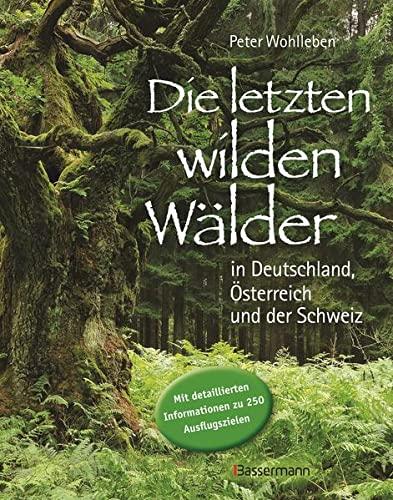 9783809430353: Die letzten wilden Wälder in Deutschland, Österreich und der Schweiz