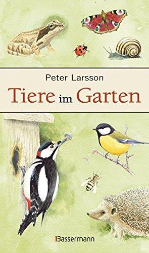 9783809431077: Tiere im Garten