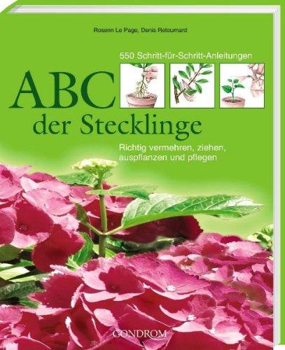 ABC der Stecklinge., Richtig vermehren, ziehen, auspflanzen und pflegen. 550 Schritt-fü...