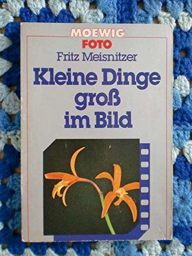 9783811845114: Skorpion (German Edition)