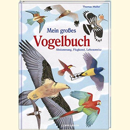 9783815794012: Mein großes Vogelbuch: Abstammung, Flugkunst, Lebensweise