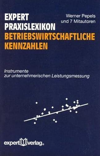 9783816924548: Expert Praxislexikon Betriebswirtschaftliche Kennzahlen