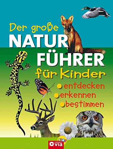 9783817461479: Der gro�e Naturf�hrer f�r Kinder: Entdecken, erkennen, bestimmen