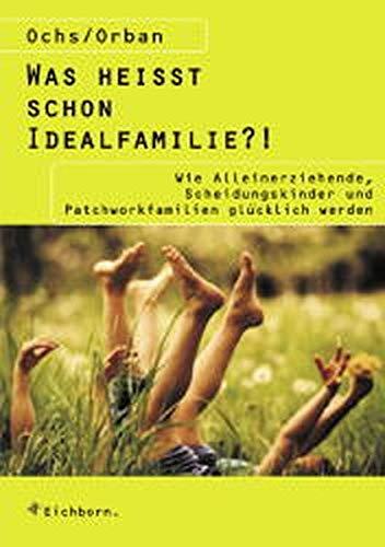 9783821839523: Was heißt schon Idealfamilie?