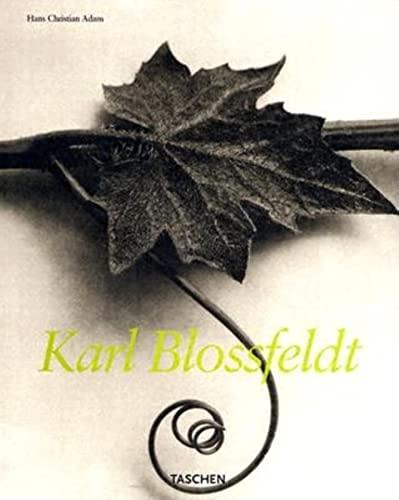 9783822834817: Karl Blossfeldt, 1865-1932