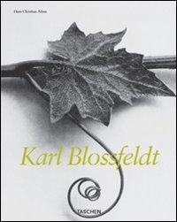 9783822834824: Karl Blossfeldt. Ediz. italiana, spagnola e portoghese (Mid size)