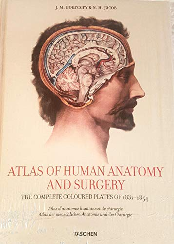 9783822848210: Atlas of human anatomy and surgery. Ediz. italiana, spagnola e portoghese