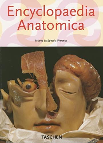 9783822850398: Encyclopaedia Anatomica (Klotz)