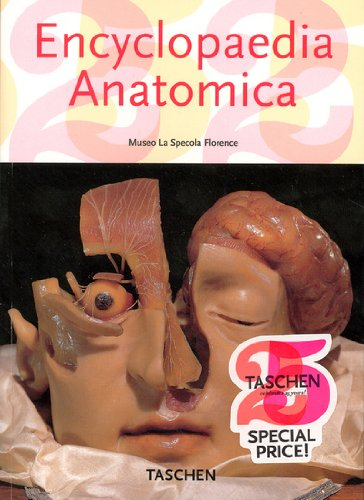9783822850398: Encyclopaedia Anatomica: A Collection Of Anatomical Waxes