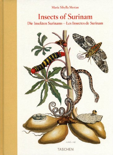 9783822852781: Maria Sibylla Merian: Insects of Surinam