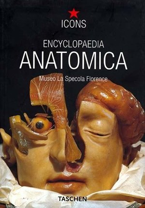 ENCYCLOPAEDIA ANATOMICA 0106010: Museo La Specola Florence