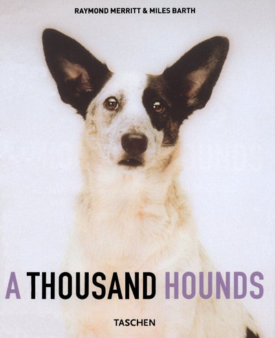 A Thousand Hounds (Taschen specials): Merritt, Raymond