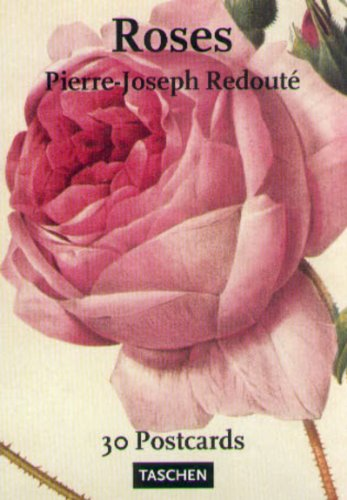 9783822864104: Pierre-Joseph Redoute: Roses: 30 Postcards