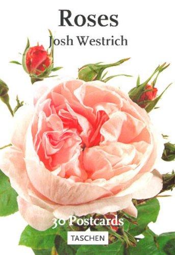 9783822874240: Roses (PostcardBooks)