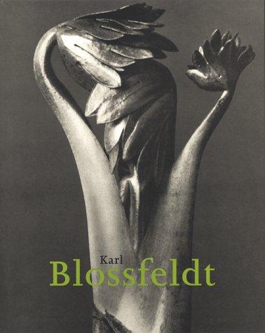 Karl Blossfeldt, 1865-1932: Hans-Christian Adam
