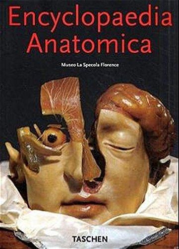 9783822876138: Encyclopaedia anatomica. Collection complète des cires anatomiques